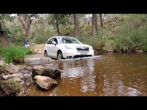 Subaru Forester off road - water crossings (видео)