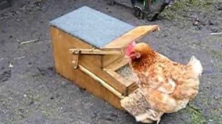 Awesome Chicken Feeder