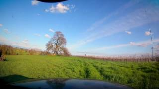 I decided to take my truck out in the accessible parts of the vineyard after one of the recent rain storms in California. The creek I drove through was over the top of the banks 48 hours before filming. I slowed down when climbing the hill because my truck is 2 wheel drive and I almost got stuck, open diffs and 2wd on a muddy hillside is not a good idea but I made it I apologize for my crappy windshield, it's partly dirty and partly messed up by bad wiper blades. Ending Theme: Soul Groove by Audionautix is licensed under a Creative Commons Attribution license (https://creativecommons.org/licenses/by/4.0/) Artist: http://audionautix.com/ Main Music: Vibe Tracks - Sugar
