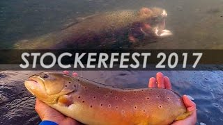 "This is ""Stockerfest"", a fly fishing event in Southeast Michigan where huge brown and rainbow trout are stocked in the Huron river for fly fisherman to catch and release. Don't take this too seriously, as the fish are strangely huge and beat up because they are old fish that have lived in hatcheries their whole life. Despite this, they take streamer flies easily and can be very fun to catch. Once the season opens, I will be doing a good amount of fly fishing for WILD stream trout, which is a whole different game then this... ...with all that being said, I hope you all enjoyed this strange fishing video! Thanks for watching!Aruba Part 2 is still coming soon! Subscribe if you haven't already to see that, and all my fishing adventures.Music: https://soundcloud.com/hanzbeats/insomniac"