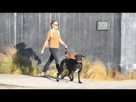 Robin Wright Enjoys The Fresh Air While Strolling With Her Pup