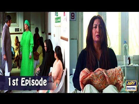 Mubarak Ho Beti Hui Hai - Episode 01 - 19th April 2017 - ARY Digital Drama