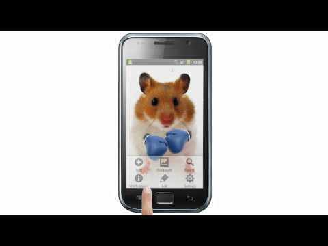 Video of Funny Hamster Cracked Screen