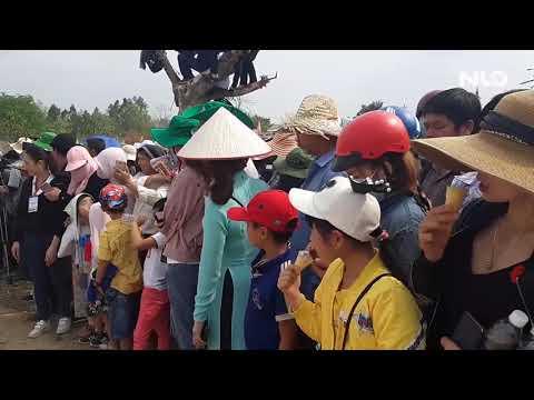 Hàng ngàn người đội nắng xem voi ăn tiệc buffet, đá bóng, chạy đua | NLĐTV - Thời lượng: 60 giây.