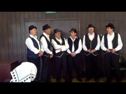 Oj Banijo - peva muška pevačka grupa ZU BANIJA iz Beograda