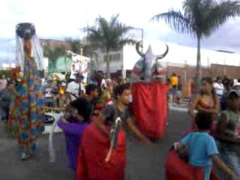 carnaval dos bois em arcoverde.mp4