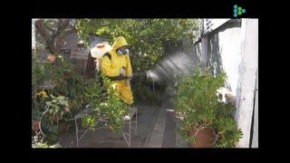 Imagen video 7