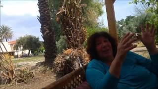 סרטה של משפ' גלבוע על בית הסבתות- אשדות יעקב מאוחד 2017(1 סרטונים)