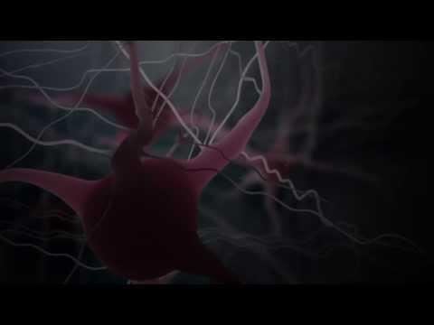 gli effetti dell'alcool sul nostro cervello in un incredibile video 3d!