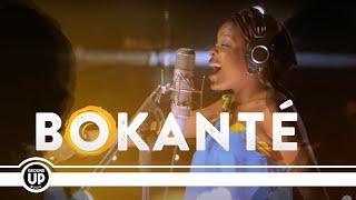 Bokanté - Strange Circles - Trailer