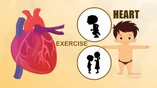 Learn about your Human Body Parts - 14 HEART - Learn about Human Body Parts For Kids (Tamil)