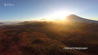 富士山とすすき 朝霧高原