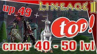 Lineage 2 Classic - (ru-off-gran kain-конь-x1) - up 49 +, TOP спот 40 - 50 (как не крути)...