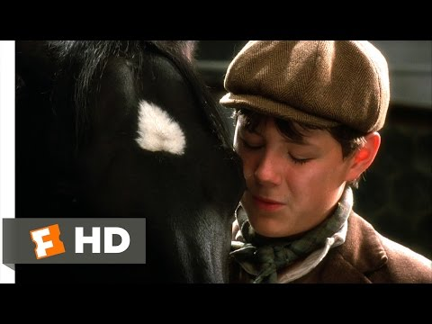 Black Beauty (1994) - A New Home Scene (6/10) | Movieclips