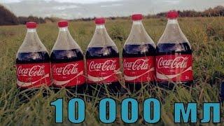 Взорвали канистру Кока Колы. Муха решила покончить жизнь самоубийством.