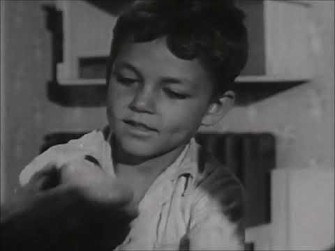 Beginning Responsibility: Taking Care of Things (1951)   Short Coronet Instructional Film