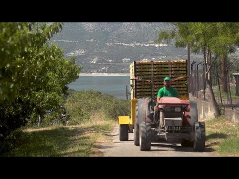 Οι βάσεις της νέας Κοινής Αγροτικής Πολιτικής