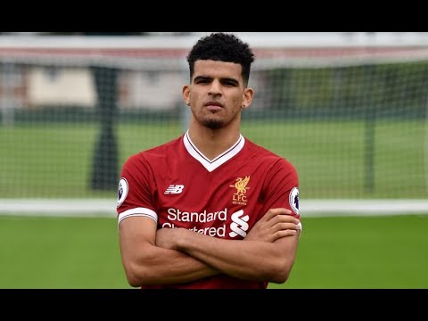 DOMINIC SOLANKE WELCOME TO LIVERPOOL! | NEXT GREAT NUMBER 9 IN LFC HISTORY? | WHAT HE BRINGS