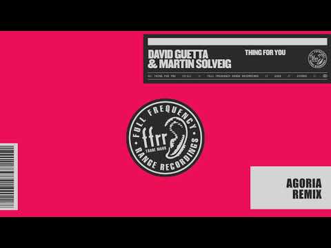 David Guetta & Martin Solveig - Thing For You (Agoria remix)