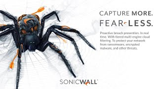 SonicWall helps you fear less
