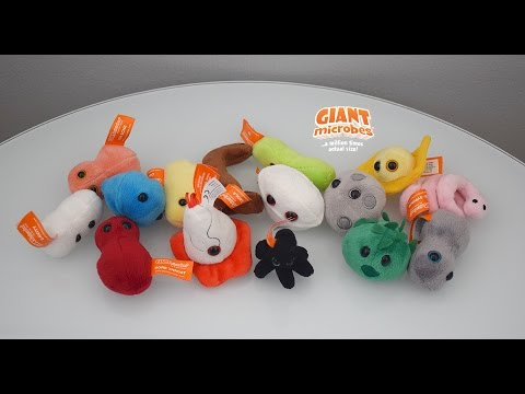 Review: Giant Microbes Plush Boxed Sets