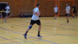 Handball Landesliga Hannover 2017/18: TV 87 Stadtoldendorf - HSG Herrenhausen/Stöcken 09.04.2018