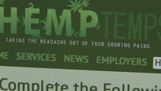 Pot employees in demand in the US