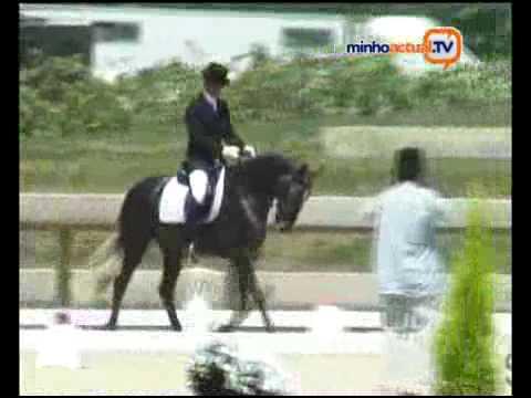 II Feira do Cavalo de Ponte de Lima – 2008