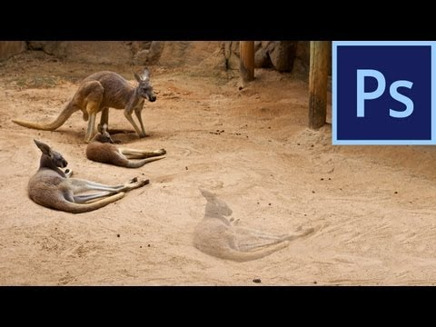 Photoshop CS6: Content-Aware Move Tool |