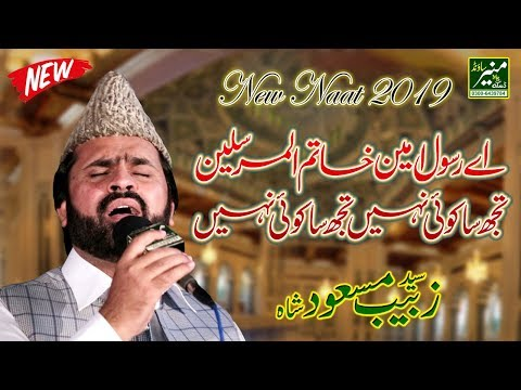 Best Naat In The World - Syed Zabeeb Masood Naats 2019 - Punjabi Naat Sharif