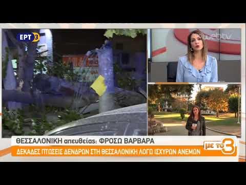 Δεκάδες πτώσεις δέντρων στη Θεσσαλονίκη λόγω ανέμων | ΕΡΤ