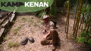 Ultimate Marginated Tortoise Care Tutorial