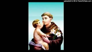 Download Lagu St Antony's novena (malayalam) Mp3