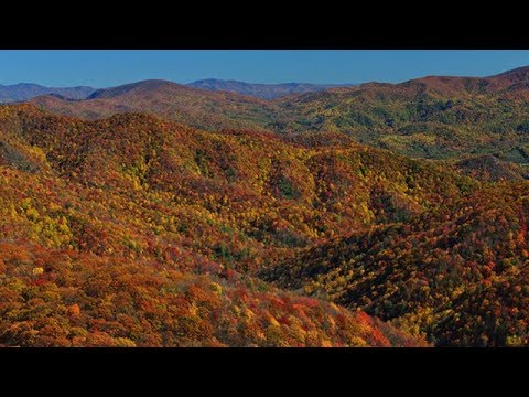 Video: Tennessee viewfinders for the colorblind