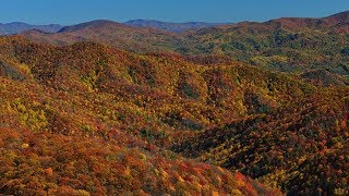 Video Tennessee Viewfinders for the Colorblind | TN Vacation MP3, 3GP, MP4, WEBM, AVI, FLV November 2018