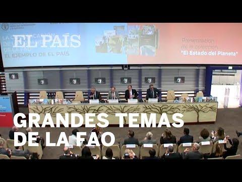 Directo | La comunicación de los grandes temas de la FAO: El ejemplo de EL PAÍS