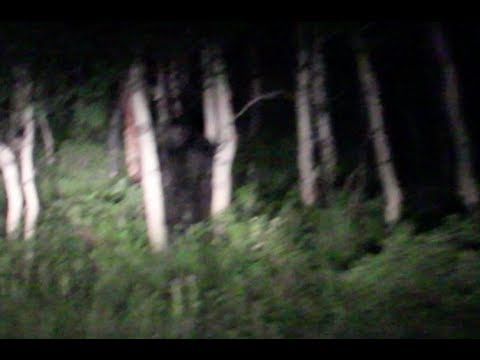 Couple Encounters Bigfoot in Utah