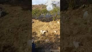 incendio-a-cervinara-in-localita-castello