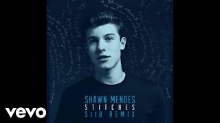 Shawn Mendes - Stitches (SeeB Remix - Audio)