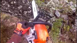 Video Stihl MS211 chainsaw action - cutting down a tree MP3, 3GP, MP4, WEBM, AVI, FLV Juli 2018