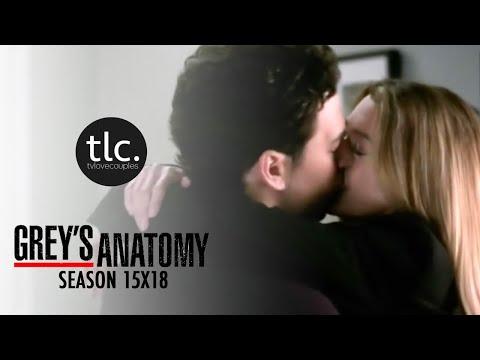Greys Anatomy Meredith & Andrew DeLuca (MerLuca) Season 15-18