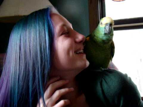 When you giggle first Tiki the parrot will start to laugh along [1:30]