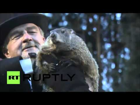 Today Is Groundhog Day See What Happened!