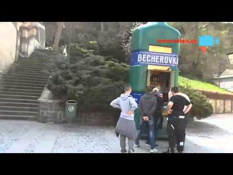 Zemanova vila v Karlových Varech