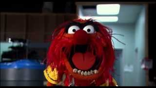 Muppets Most Wanted - Teaser