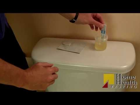 how to pass a 15 ng drug test