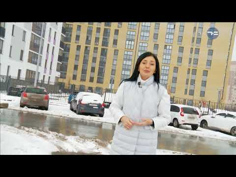 Ясен день -  «Утро с Вами» 23.11.2017 - DomaVideo.Ru