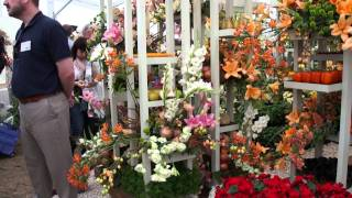 #467 Hampton Court Flower Show 2011 - Waitrose Messeaufbau