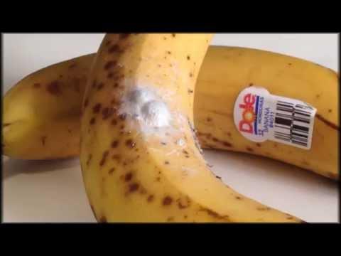 太噁心了,本來想吃香蕉,竟然像恐怖片情節一樣...