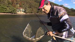 Lure fishing with soft plastics in estuaries [VIDEO]